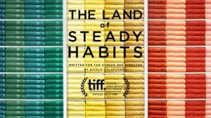 The Land of Steady Habits (2018)