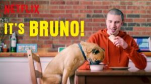 Welcome Bruno