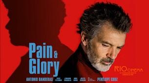 Pain & Glory (2019)