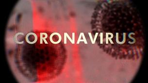 Coronavirus (2020)